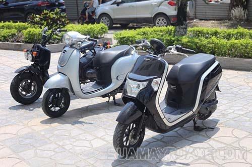 Xe máy 50cc Honda Dunk trẻ trung phong cách