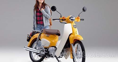 Xe máy 50cc Honda Little Cub nhỏ gọn, mạnh mẽ