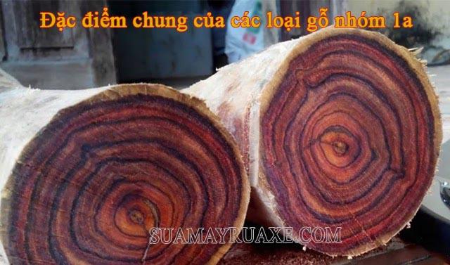 Đặc điểm của gỗ quý là vân gỗ rõ ràng