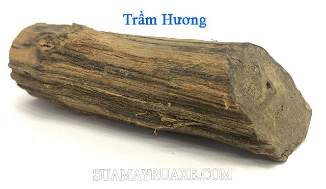 Trầm hương là gỗ đắt nhất thế giới