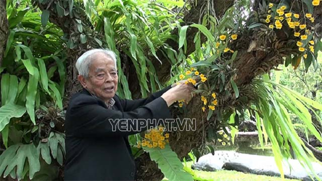 GS Rapee Sagarik có tình yêu mãnh liệt với loại cây này